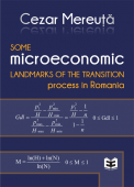 Some microeconomic landmarks of the transition process in Romania