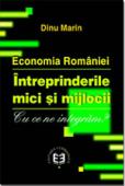Economia României. Întreprinderile mici și mijlocii. Cu ce ne integram?