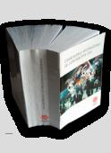 Standardele internaționale de Contabilitate 2002