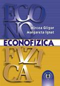 Econofizica. O introducere în fizica sistemelor socioeconomice