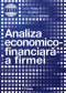 Analiza economico-financiară a firmei
