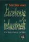 Excelența industrială: practica și teoria calității