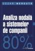 Analiza nodală a sistemelor de companii