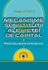 Mecanisme și instituții ale pieței de capital: piețe de capital emergente
