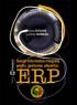 Soluții informatice integrate pentru gestiunea afacerilor - ERP