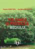 Poluarea și protecția mediului