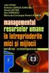 Managementul resurselor umane în întreprinderile mici și mijlocii: tendințe contemporane